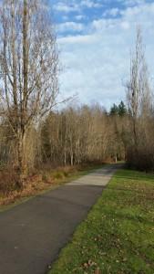 Path trees path