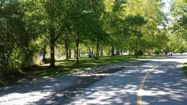 Greenlake Pathways